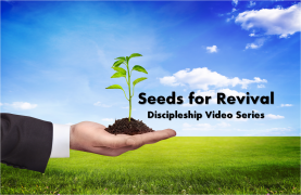 Seeds for Revival II
